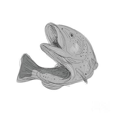 Cutthroat Trout Jumping Drawing Art Print