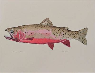 Cutthroat Trout Original by Kevin Webster