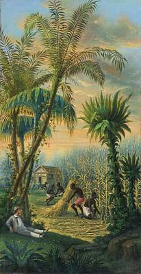 Antilles Painting - Cutting Sugarcane In The Antilles by MotionAge Designs