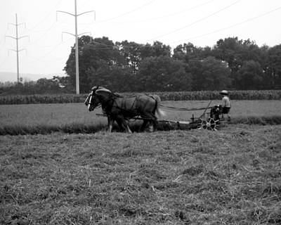 Photograph - Cutting The Hay by George Jones