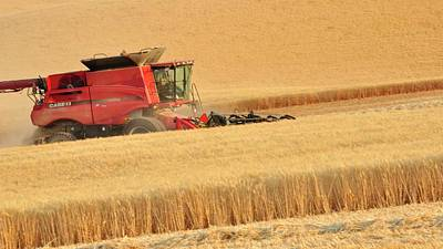 Photograph - Cutting Wheat 1352 by Jerry Sodorff