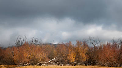 Autumn Scenes Photograph - Cuyamaca Autumn by Joseph Smith