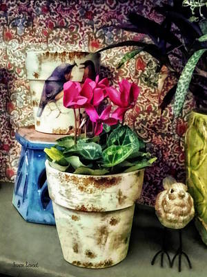 Photograph - Cyclamen In Flowerpot And Ceramic Bird by Susan Savad
