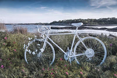 Photograph - Cycle By The Sea by Robin-Lee Vieira