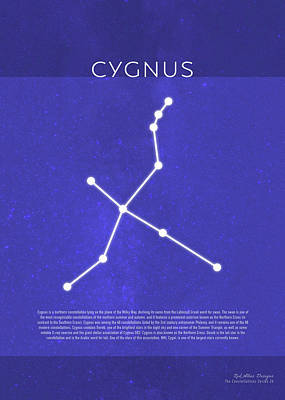 Cygnus Mixed Media - Cygnus The Constellations Series 26 by Design Turnpike