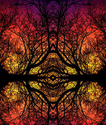 Cymatic Forrest  Art Print by Christopher Phelps