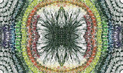 Fireworks Mixed Media - Cymatics Geometry #1550 by Rainbow Artist Orlando L aka Kevin Orlando Lau