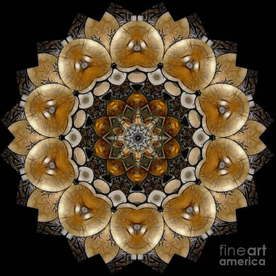 Digital Art - Cymbalisn by Rhonda Strickland