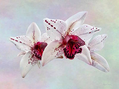 Photograph - Cymbidium Baltic Dew Freckle Face by Susan Savad