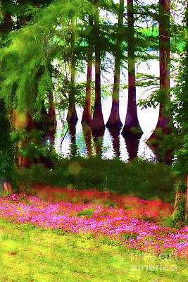 Photograph - Cypress And Oxalis 20x30 by Judi Bagwell
