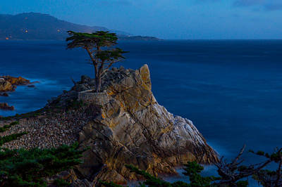 Photograph - Cypress At Twilight by Derek Dean