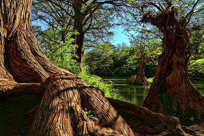 Photograph - Cypress Bend Park In New Braunfels by Judy Vincent