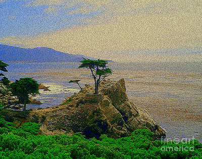 Photograph - Cypress  by Bob Brents