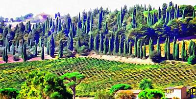 Photograph - Cypress Landscape Umbria by Dorothy Berry-Lound