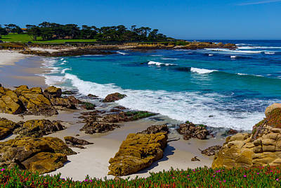 Photograph - Cypress Point by Derek Dean