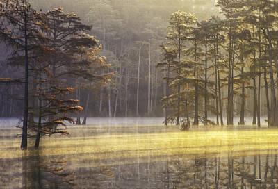 Photograph - Cypress Pond 14 by Jim Dollar