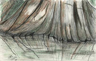 Cypress Swamp Drawing - Cypress Reflections by Theresa Willingham