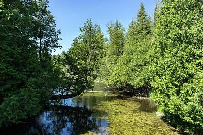 Modern Kitchen - Cypress River - Summery Vibe and Clean Wilderness by Georgia Mizuleva