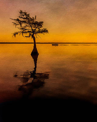 Photograph - Cypress Sunrise  by Erwin Spinner