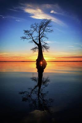 Photograph - Cypress Sunset Reflection by Alan Raasch