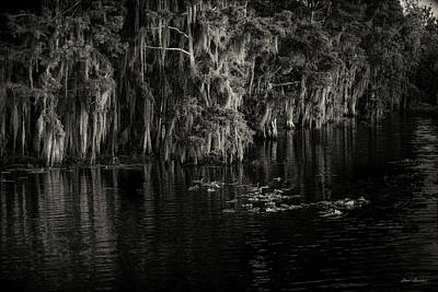Photograph - Cypress Trees Moss And Lilly's by Glenn Gemmell