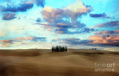 Photograph - Cypress Trees Of San Quirico D'orcia Of Tuscany by Craig J Satterlee