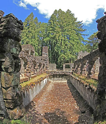 Photograph - D7b6371 Jack London Wolf House Reflecting Pool Ruins by Ed Cooper Photography