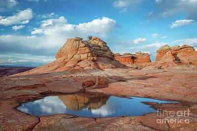 Photograph - Da Dip by Bill Singleton