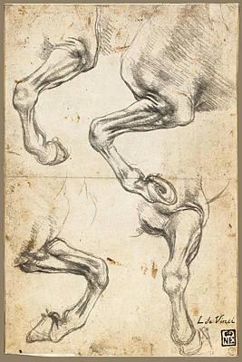 Da Vinci Horse Leg Study By Da Vinci Original by Tony Rubino