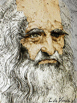 Monotone Drawing - Da Vinci Self Portrait Remastered With Added Color By Da Vinci by Tony Rubino