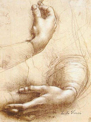Monotone Drawing - Da Vinci Study Of Hands by Tony Rubino