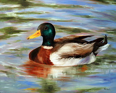 Dabbling Duck Art Print