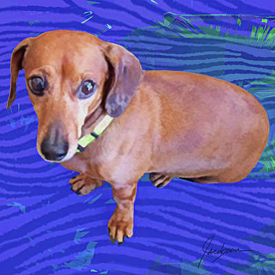 Mixed Media - Dachshund Blue by Jackie Jacobson