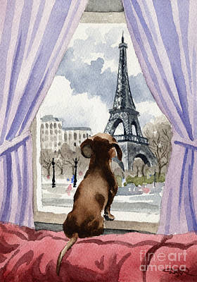 Paris Wall Art - Painting - Dachshund In Paris by David Rogers