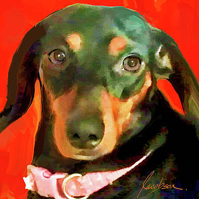 Painting - Dachshund by Jackie Jacobson