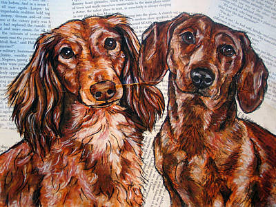 Dachshund Longhaired And Smooth Coat Art Print by Christas Designs