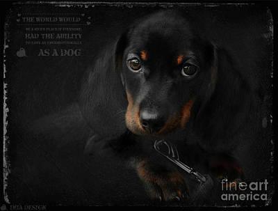 Dachshund Puppy Digital Art - Dachshund - Puppy Love by iMia dEsigN