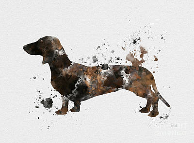 Dog Mixed Media - Dachshund by Rebecca Jenkins