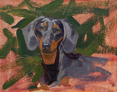 Dachshund Oil Painting - Dachshund by Taylor Paints