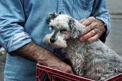 Terrier Digital Art - Daddy's Girl by Ella Kaye Dickey