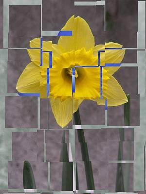 Digital Art - Daffodil 1 by Tim Allen