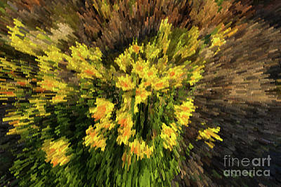 Digital Art - Daffodil Abstract by Les Palenik
