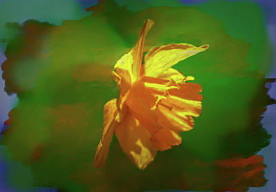 Digital Art - Daffodil On Green Abstract #hh3 by Leif Sohlman