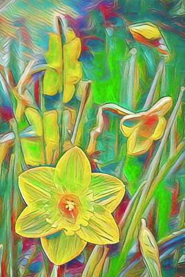 Photograph - Daffodils 11 by Pamela Cooper