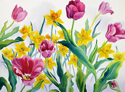 Pink And Yellow Painting - Daffodils And Tulips by Christopher Ryland