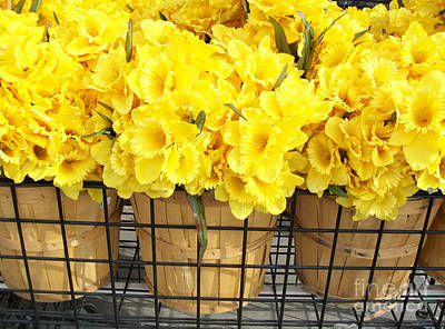 Daffodils At The Flower Market Original