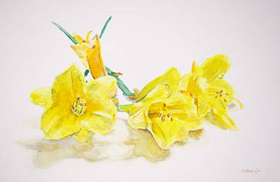 Painting - Daffodils by Christopher Reid