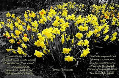 Photograph - Daffodils by Joan-Violet Stretch