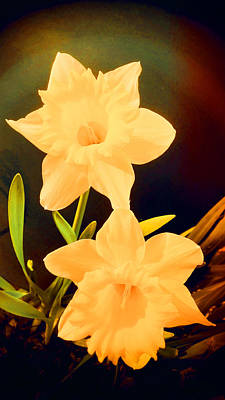 Photograph - Daffodils by Mike Breau
