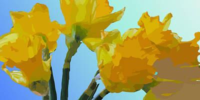 Daffodils Art Print by Robert Bissett